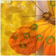 rastuotu-stiklu-pavyzdziai-2-1-1
